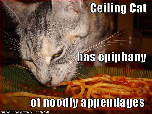 Ceiling Cat has epiphany of noodly appendages